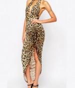 leopard -1